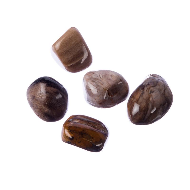 Legno Fossile burattato