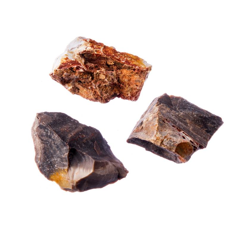 Legno Fossile naturale grezzo