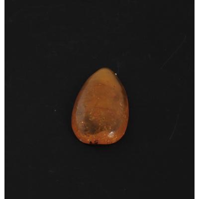 Cabochon in Ambra Baltica - Taglio a Goccia 2.5x4.7x0.8