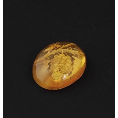 Cabochon di Ambra Baltica - Ovale 2.2x2.8x0.8