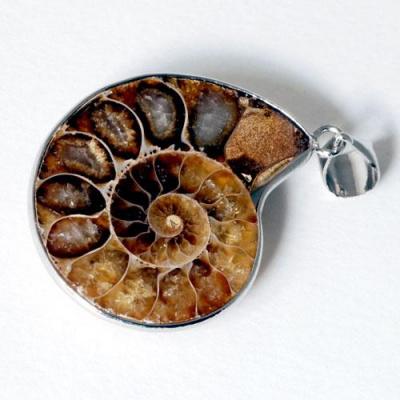 Ciondolo con animale in Ammonite e Argento Tibetano
