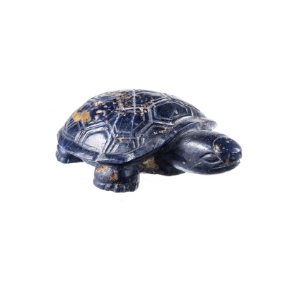 Tartaruga in Zaffiro
