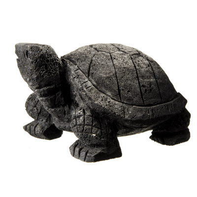 Tartaruga in Lava