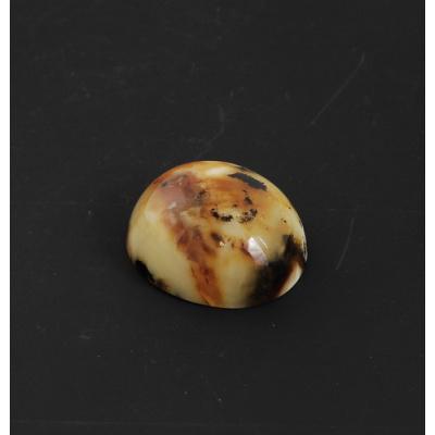 Cabochon in Ambra Baltica - Ovale 3.4x3.8x1.8