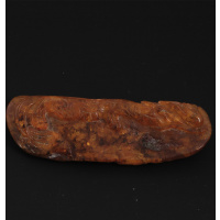 Ambra Cinese - Piccola Scultura a forma di Drago 3.3x9.5x1.5